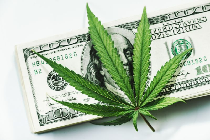 In portfolio 2020, there should be 5 Canadian Pot Stock